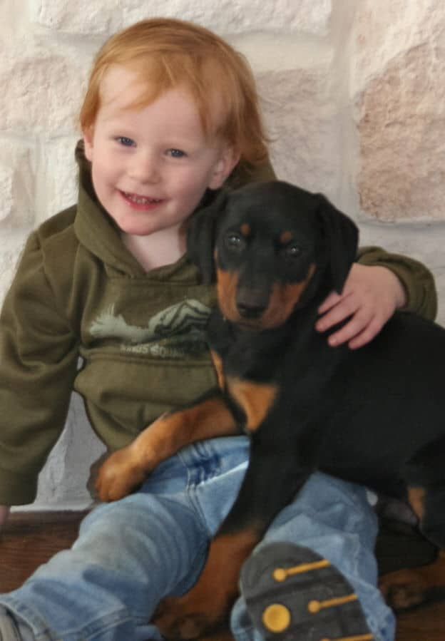 black and rust male dobe pup with new family